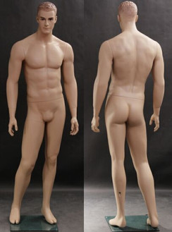 Male Mannequin Fleshtone MM-WEN5