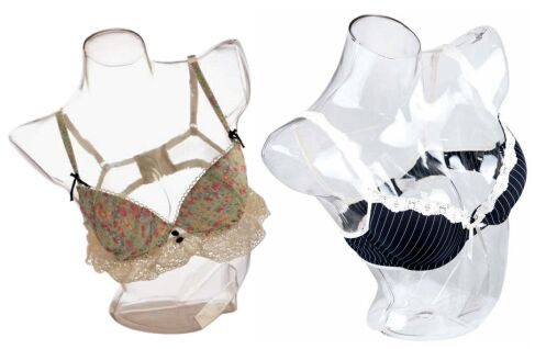 Clear Plastic Female Torso Form PS-SHT-2