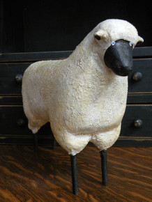 Large White Sheep