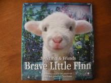 Brave Little Fin