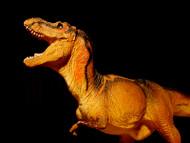 Tyrannosaurus by Carnegie (1999 version)