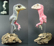 Scipionyx 1:1 Resin Kit by Richard