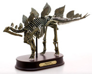 Stegosaurus Skeleton by Favorite