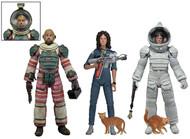 "Dallas, Nostromo Spacesuit Ripley, Nostromo Jumpsuit Ripley from ""Alien"" Series 4 by NECA"