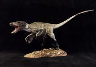 Deinonychus Finished Model by Dan's Dinosaurs