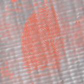 Bi-Chromatic Print Powder, Red, 2oz