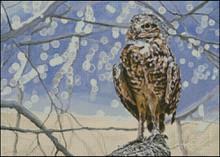 Burrowing Owl Cross Stitch