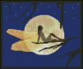 Star Gazing Fairy
