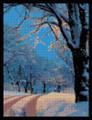 Aqua Winter Sky