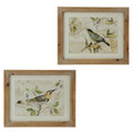 "20"" Wooden Frame with Glass Bird Prints Set of 2"
