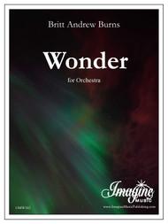 Wonder (download)