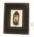 Framed feather w/ Wolf Painting