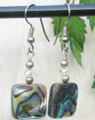 Abalone  Earrings ER211