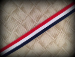 Patriotic Stripes 1/2 Inch Collar