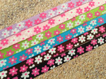 Crazy Daisies 1/2 Inch Collar