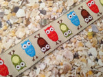 Colorful Owls 3/4 Inch Collar