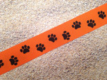 Halloween Paws 1 Inch Collar