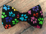 BowTie - Colorful Paws