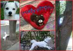 Frosty Strong Spring 2017 Fundraiser - Memorial Squirrel HeartSqueak