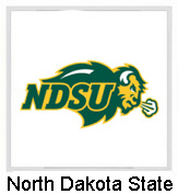 north-dakota-state-bison-baby