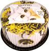 Iowa Hawkeyes Baby Fan Cake Clothing Gift Set