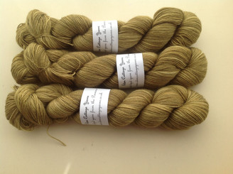 Eden Cottage BFL sock in Hazel (lot 140914)