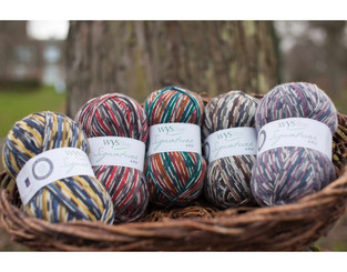 Signature 4-ply Country Birds from West Yorkshire Spinners