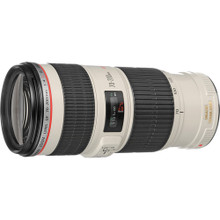 Canon EF 70-200mm f/4L IS USM Lens 35 day/140 week/280 month