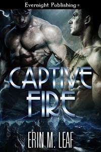 captivefire1s.jpg
