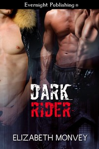 darkrider1s.jpg