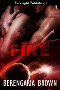 fire1s.jpg