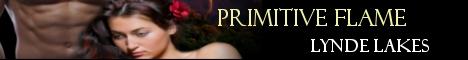 pflame-banner.jpg