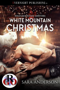 whitemountainchristmas1s.jpg
