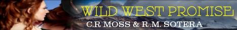 wildwestpromisebanner.jpg