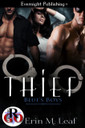 Genre: Contemporary Menage (MMF) Romance  Heat Level: 3  Word Count: 13, 125  ISBN: 978-1-77233-082-3  Editor: JS Cook  Cover Artist: Jay Aheer
