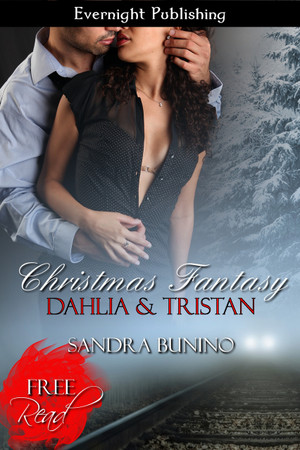 Genre: Erotic Contemporary Romance  Heat Level: 3  Word Count: 5, 165  ISBN: 978-1-77233-141-7  Editor: Brieanna Robertson  Cover Artist: Sour Cherry Designs