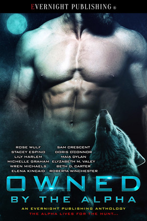 Genre: Erotic Paranormal Romance  Heat Level: 3  Word Count: 159, 200  ISBN: 978-1-77339-236-3  Editor: Audrey Bobak  Cover Artist: Jay Aheer