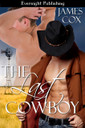 Genre: Alternative (MM) Western Romance