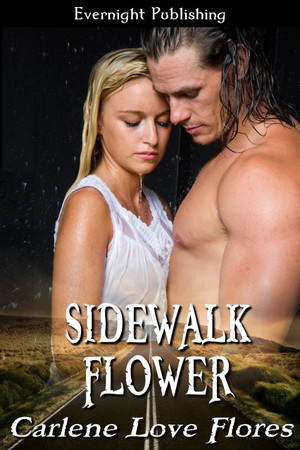 Genre: Contemporary Romance