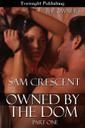 Genre: Erotic May/December Romance  Heat Level: 3  Word Count: 54, 070  ISBN: 978-1-77130-293-7  Editor: Karyn White  Cover Artist: Sour Cherry Designs