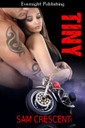 Genre: Erotic Contemporary Romance  Heat Level: 4  Word Count: 59, 080  ISBN: 978-1-77130-723-9  Editor: Karyn White  Cover Artist: Sour Cherry Designs