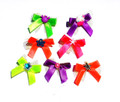 Summer Lovin Neon Tiny Tots