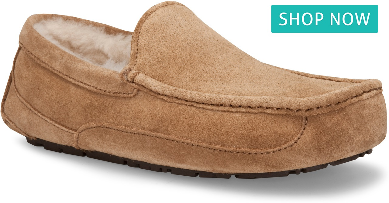 UGG Ascot in Chestnut Suede