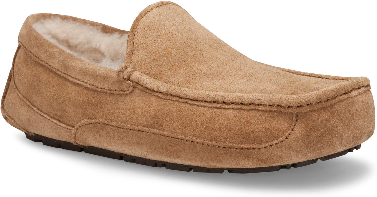 ugg ascot mens slippers nz