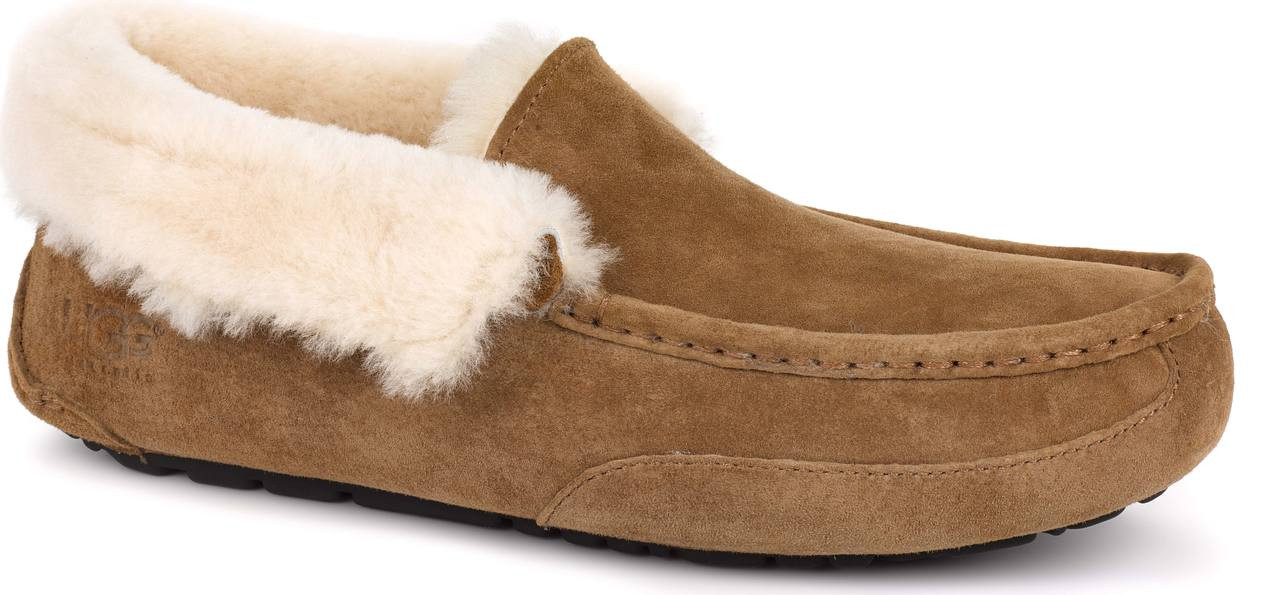 ugg mens slippers nz