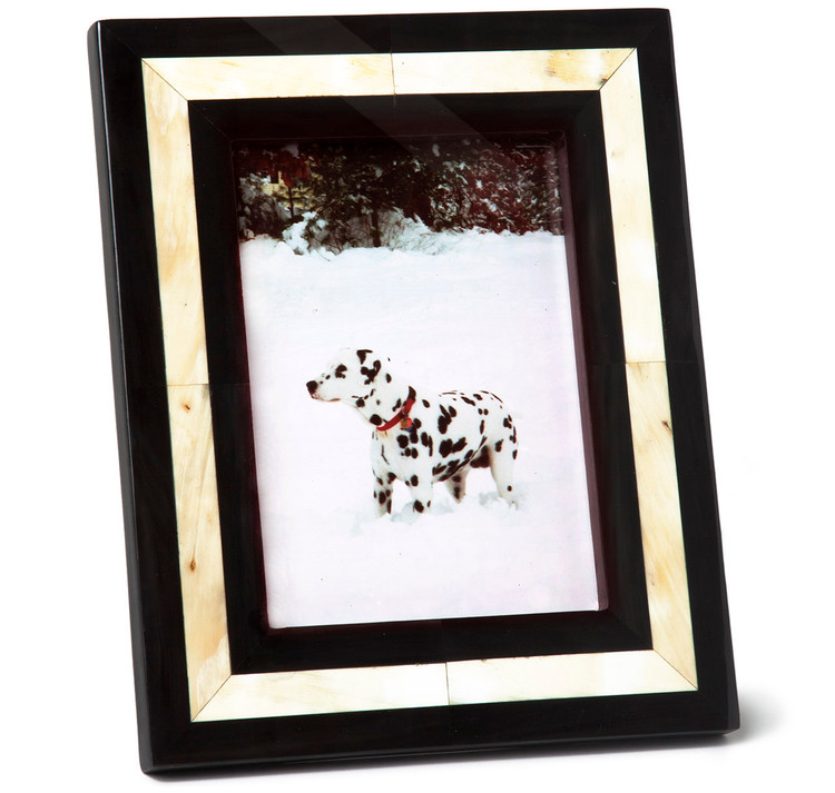 Sir Jack's Ox Horn Picture Frame