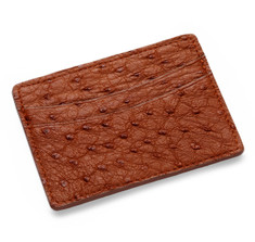 Tan Ostrich Card Holder