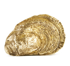 Oyster Shell Belt Buckle