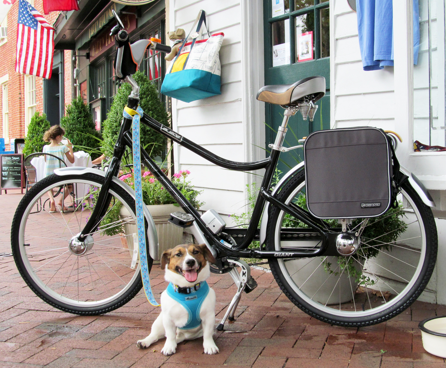 Dick Smothers raffles his bike for to benefit the animals