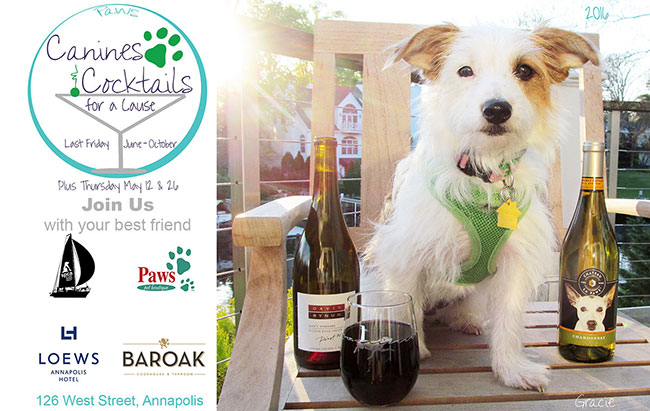 caninescocktails2016-ppostcardfinal-w650.jpg